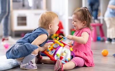 L'agressivité du jeune enfant, pourquoi et comment l'accompagner ?
